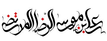 شعر در مدح امام رضا