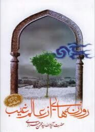 آیت الله محمد حسین اصفهانی ، روزنه هایی از عالم غیب