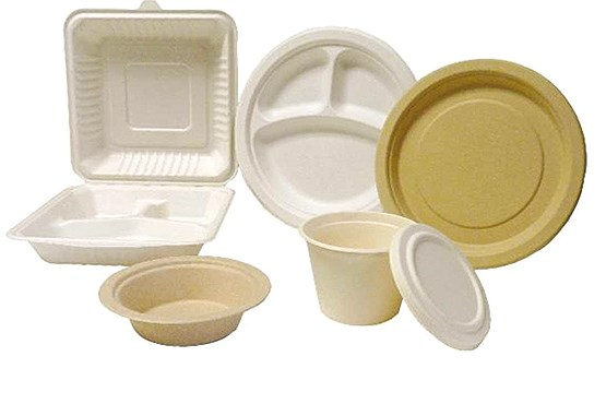 ظروف یکبار مصرف درب دار