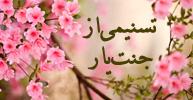 وبلاگ تسنیمی از جنت یار