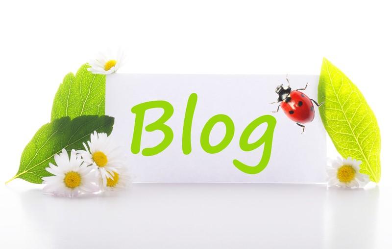 وبلاگ های پیشنهادی هفته های کوثربلاگ
